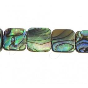 Scoica abalone patrat 12mm